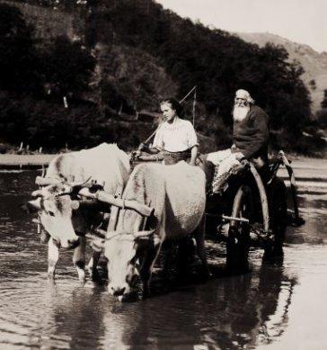 TARANI-ROMANI-1913