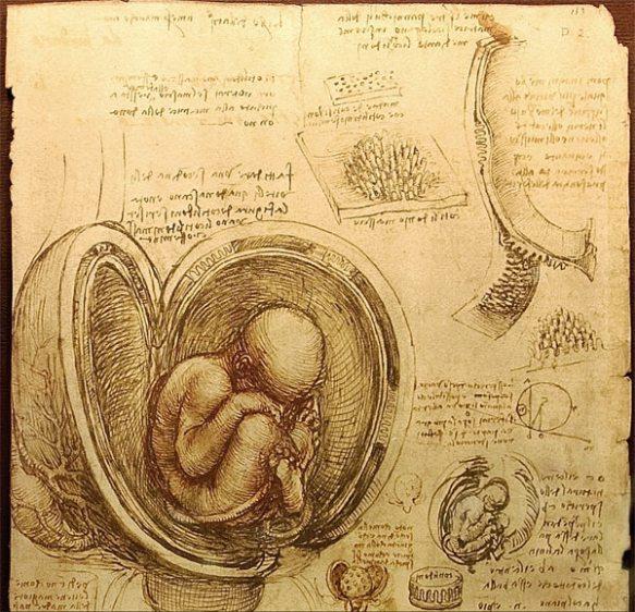leonardo-da-vinci-pregnant