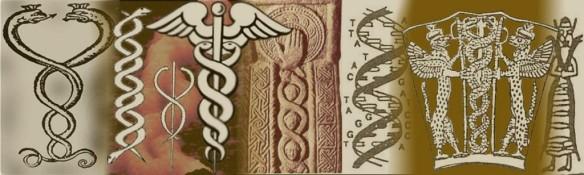 sumer4-1024x308